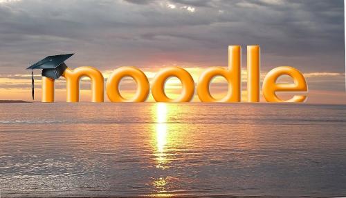 Moodle Trend: steeds meer corporate