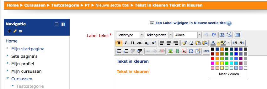 Huisstijl kleuren Moodle in TinyMCE editor